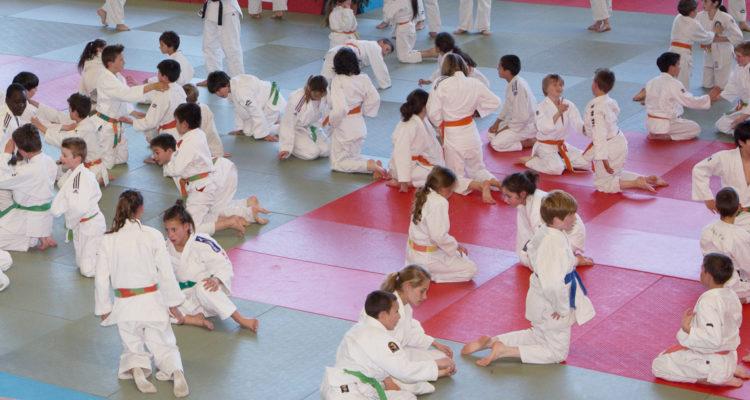 Albanais Seyssel judo Pays de Savoie