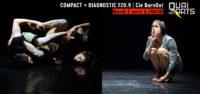 Compact + Diagnostic F20.9   Compagnie BurnOut