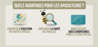 Déclaration des ruches